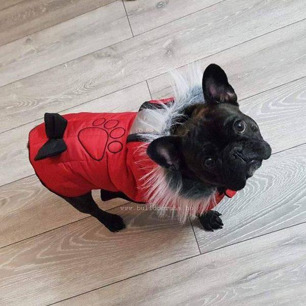 Ujjatlan kutyakabát francia bulldogok részére