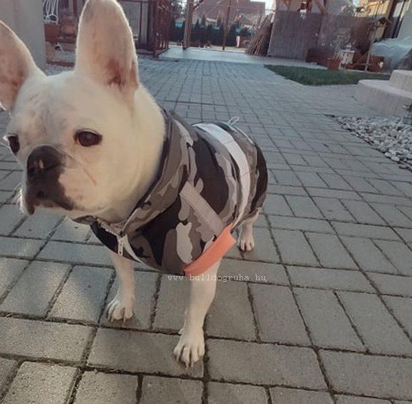bulldog mellény